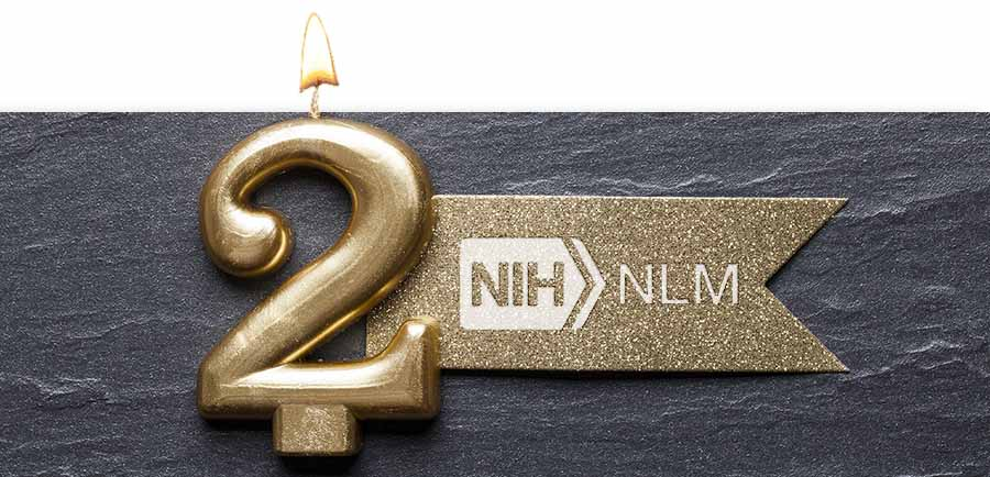 A candle in the shape of a two burns brightly next to a pennant embossed with the NLM logo