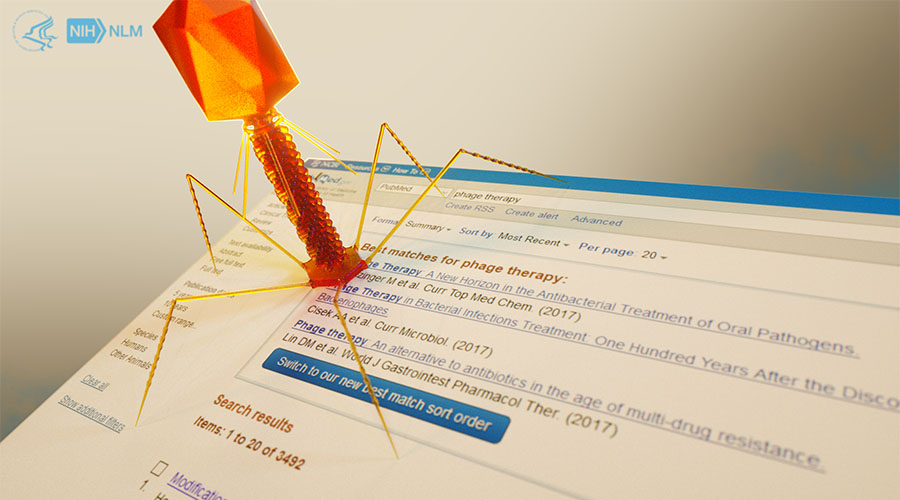 Concept image: an orange bacteriophage rests on the corner of a PubMed search results page
