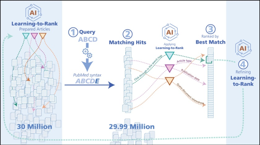 Image showing preparing and refining preparing, matching, ranking and refining articles in NLM's PubMed